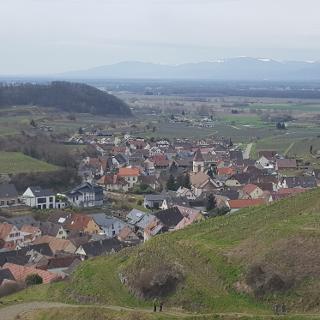 Blick vom Kaiserstuhl bei Achkarren