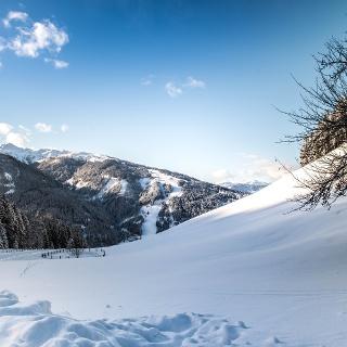 Blick vom Sattelbauer Richtung Skigebiet