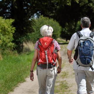 Wanderer im Naturpark Lauenburgische Seen