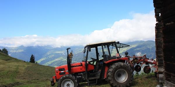 Etappe: Landwirtscahft in Samest