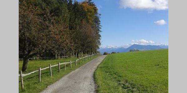 Seetal: Wandertipp Nr. 5 Schongau - Horben - Schongau