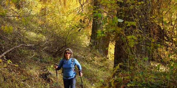 Herbstwandern bei Scuol.