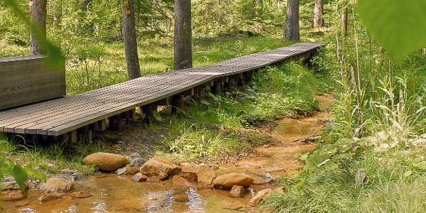 Rözenwald, Wasserweg