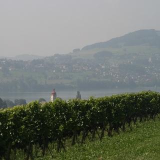 Seetal: Wandertipp Nr.10 Meisterschwanden - Bettwil - Aesch LU