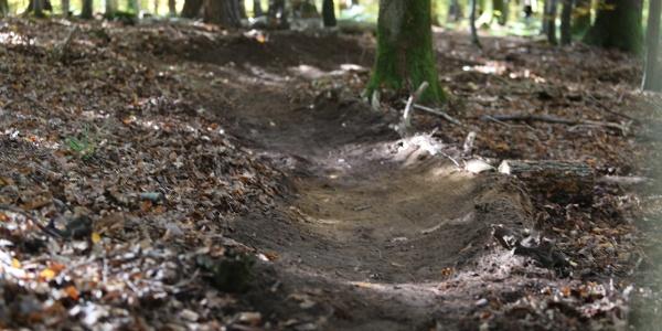 Trailabschnitt Nähe Prevorst - IVB MTB 6 HochHinaus