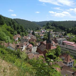Blick von der Burgbank auf den östlichen Teil Elmsteins