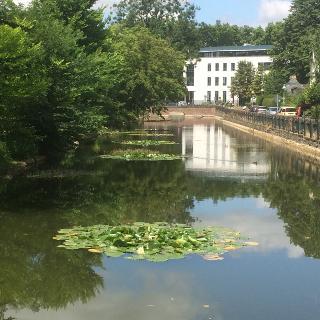 Poppelsdorfer Schloß, Weiher