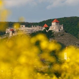 Die Burg von Sümeg