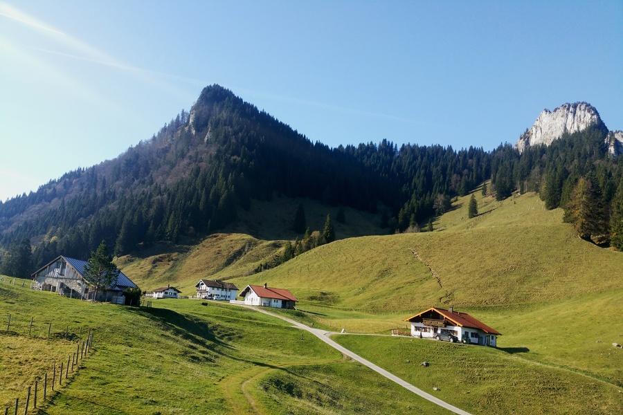 Samerberg  - zu den Daffnerwald-Almen am Heuberg - Rundweg Nr. 40