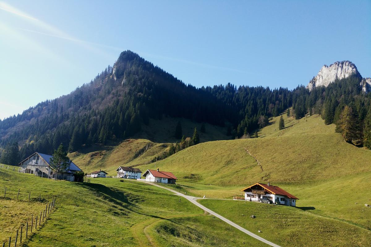 Daffnerwald-Almen unterhalb des Heubergs