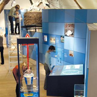 Westfälisches Storchenmuseum im Haus Windheim No2