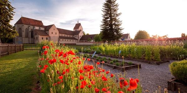 Kräutergarten Kloster Reichenau