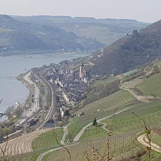 Lorch am Rhein - das Ziel ist erreicht