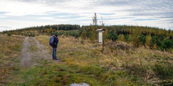 Információs tábla tájékoztat a fakitermelés okairól