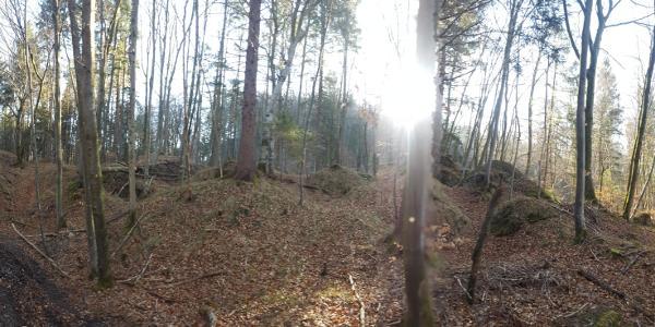 Römerschanze bei Grünwald