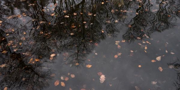 Das Wasser von Hétforrás(Siebenquelle)sammelt sich in einem Steinbecken