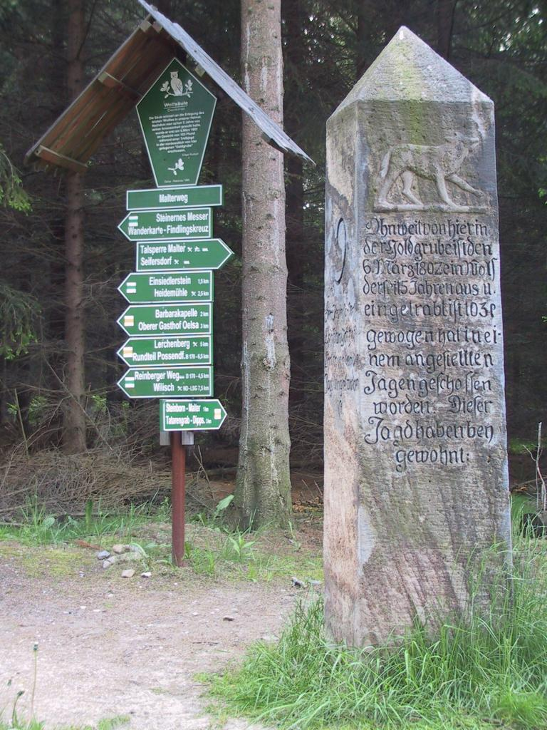 Wolfssäule in der Dippoldiswalder Heide
