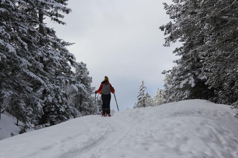 Schneeschuhtrail Arni