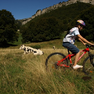 Baby Mountain bike - Monte Baldo