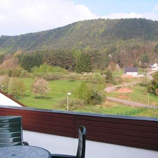 Aussicht I Balkon Ferienwohnung Waldblick