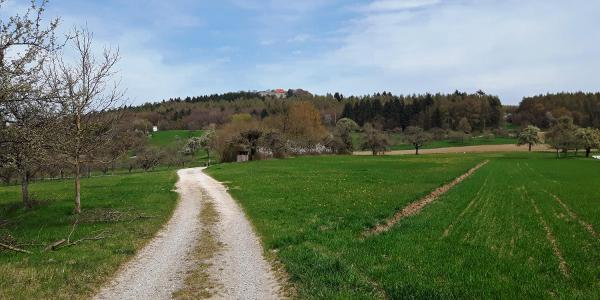 Weg Richtung Friedinger Schlößle