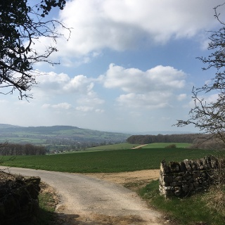 Out of the forest down to Winchcombe