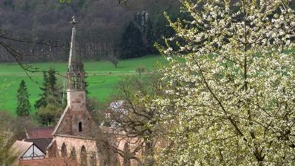 Blick auf das Kloster Rosenthaler Hof