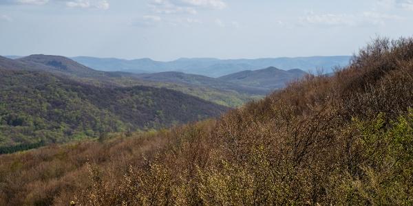 Kilátás a Visegrádi-hegységre a Salgóvárról