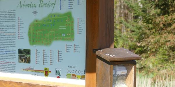 Infotafel Arboretum Bondorf