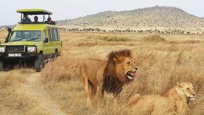 Reisebaustein Die schönsten Nationalparks Tansanias