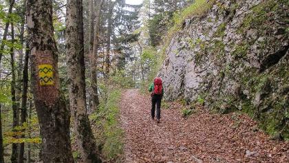 SalzAlpenSteig - Der Premium Wanderweg