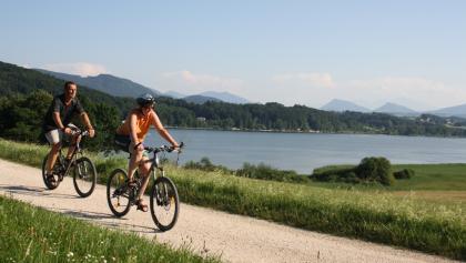 Radfahren am Wallersee