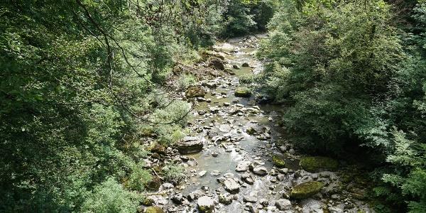 Flusslandschaft der Sihl bei der Scheerenbrugg