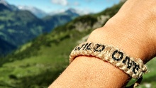 Via Alpina: Taufersbergalpe - Untere Guten-Alpe (day 84)