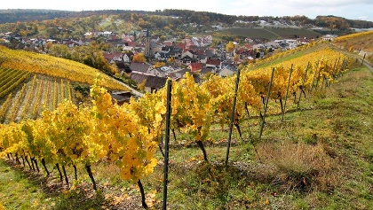 Blick auf Beckstein im Herbst