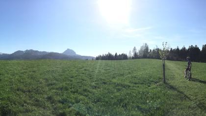 Panoramablick vom Toten Gebirge über den Traunstein ins Alpenvorland