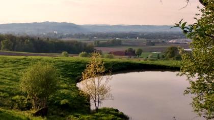 Teich unterhalb Erdpresserhof 355m