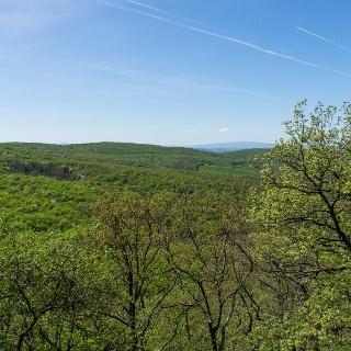 Panoráma a Börzsöny felé a Pusztavár-hegyről