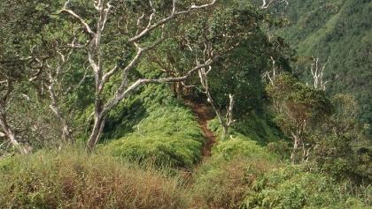 Koolau Range