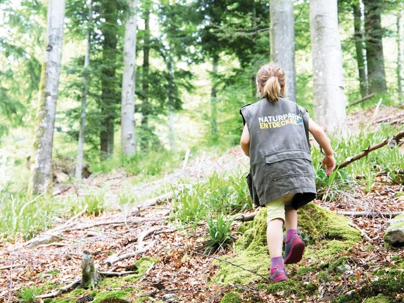 Wandern für Familien: Der Pirschpfad in Bad Peterstal-Griesbach