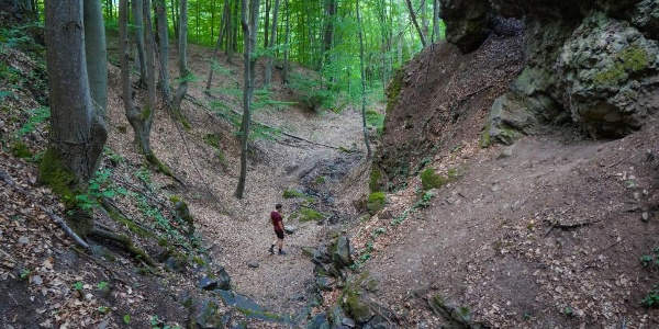 A Felső-vízesés vulkáni kőóriásainak szorításában