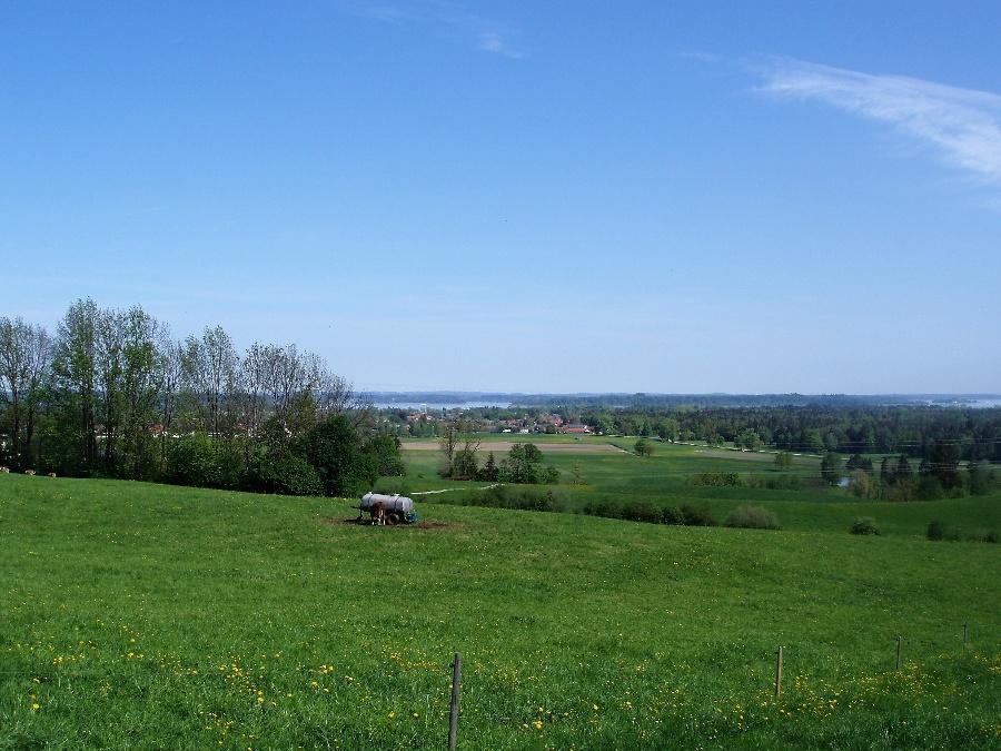 Blick auf das Bernauer Hochmoor-©Quelle: Gemeinde Bernau a. Chiemsee