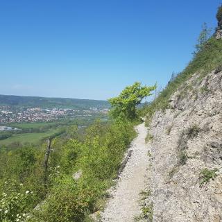 Auf der Johannisberg-Horizontale