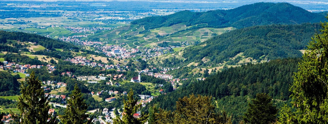 Buhlertal
