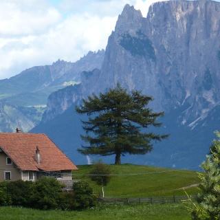 Hofer-Hof in Mittelberg mit dem Schlernmasssiv im Hintergrund