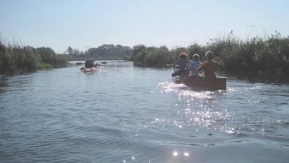 """Raus aus dem Alltag, hinein in die Natur - das artenreiche Naturschutzgebiet """"Recknitztal"""" lässt sich wunderbar mit dem Kanu erkunden."""