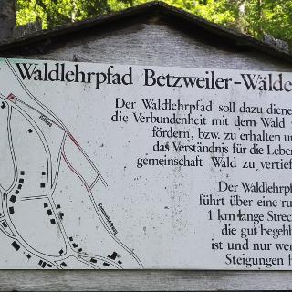 Wegweiser Waldlehrpfad