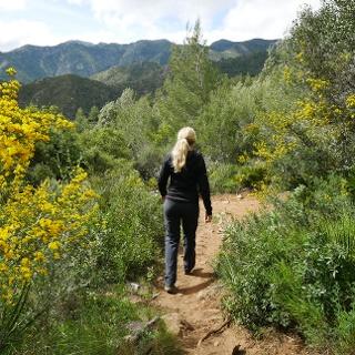 La senda a través de la vegetación mediterránea en las estribaciones de la Sierra Blanca