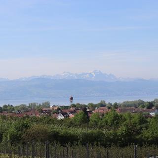 Aussicht bei Kressbronn Berg