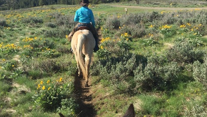Cascade Loop Sun Mountain Stables Trail